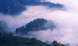 【周末】登缥缈峰,徒步山脊仙境,看太湖万顷风光(1天-已成行)