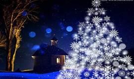 圣诞节,做自己的设计师, DIY专属圣诞树!
