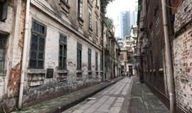 周日·慢赏广州 | 情系社区·龙导尾,寻年味