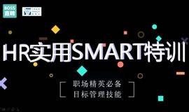 HR实用SMART特训——职场精英必备目标管理技能