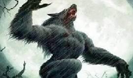 VC圈的两位狼人杀高手,你敢来挑战吗?!