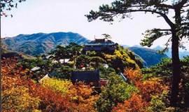 我想约你去妙峰山,闻春读寺听古今