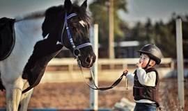 骑一次马,带孩子感受马背上的乐趣