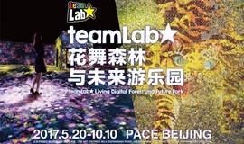 teamLab:花舞森林与未来游乐园 & Raindance VR影展