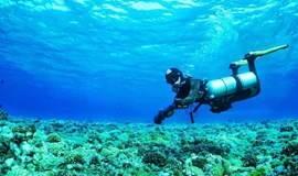 够旅游Buddy线下分享会第二弹-老金和你聊聊潜水那些事……
