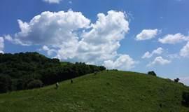 【7月1日】海坨山一日活动,最美山峰,高山草甸自然美景