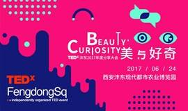 TEDxFengdongSq 2017年度大会