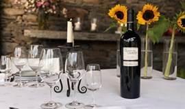 Quinta do Crasto葡萄牙杜罗河卡斯特罗酒庄葡萄酒品鉴会