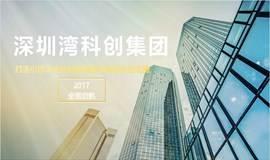 深圳湾科创集团 || 新经济企业顶层设计