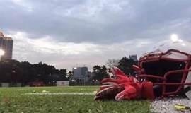 2017珠江西岸先进装备制造业投资贸易会期间企业家橄榄球友谊赛