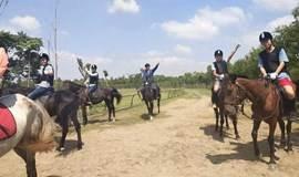 金秋骑马射箭旅行 | 和你一起策马弯弓最快意!