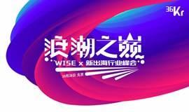 浪潮之巅——WISEx新出海行业峰会