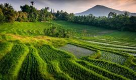 11.17 巴厘岛生态徒步暨留学教育分享会