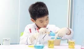 亲子实验室—神奇的毛细现场—让水搬家!