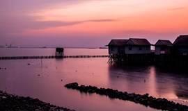 11.19周日:约在美味的海鸥岛,环绿道骑行