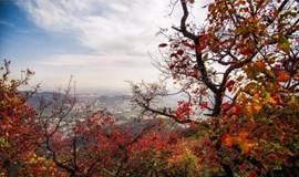 区块链创业《创世》第五期,爬香山、山下喝茶聊天!