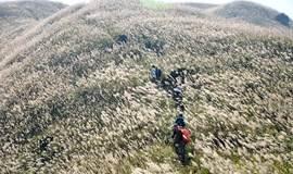 周六周日出发【户外爬山】惠州大南山穿越黄金大草坡、满山遍野芦苇荡下摄影、云中漫步斧头石 一天活动