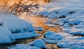 【野蘑菇】元旦12月30日-1月1日走进水墨画王国-乌兰布统草原皑皑白雪摄影自由越野行