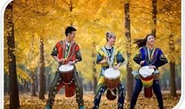 不会音乐也能玩的非洲鼓 ⌒.⌒