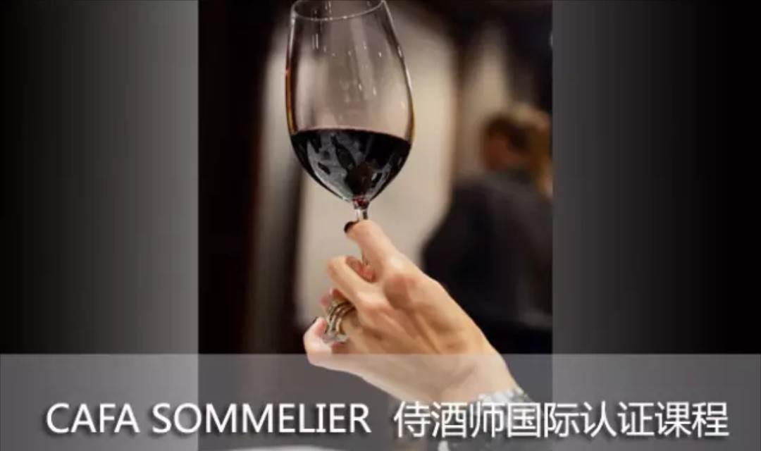 法国CAFA权威侍酒师葡萄酒初级课程,轻松入门!