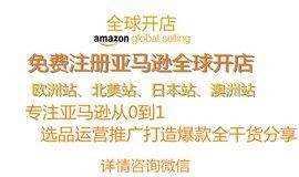 亚马逊全球开店指导-选品-运营-店铺诊断-问题解答全干货分享活动
