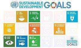 联合国可持续发展目标项目工作坊&分享会 United Nations SDG Workshop & Presentation