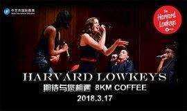 哈佛大学史上最卖座阿卡贝拉乐团Low Keys中国首秀演出