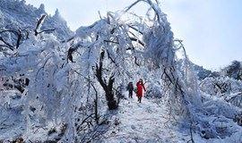 (下雪了)2018.2.02晚-04:登南岳衡山,赏雾凇,祝融峰祈福(汽车往返)