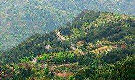 3月4日:(开年巨献)-徒步余姚桃花岭,登顶四明山北麓最高峰乌胆山