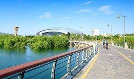 最美徒步:从深圳湾公园到人才公园