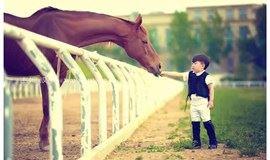 小小骑士,亲子马术体验活动、享受高端定制体验