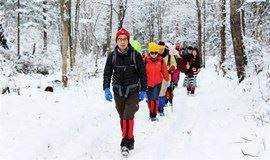 (确定出发)【东北冰雪盛宴 8天】冰城哈尔滨-徒步穿越雪乡-长白山-梦幻老里克湖-吉林滑雪