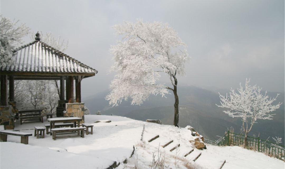 【周末-已成行】冬季徒步莫干山,走蒋公道,看大竹海(1天)