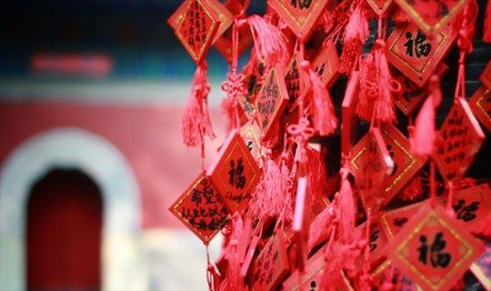 新年之旅 | 走过佛寺与茶村,祈福茹素,寻找年味,开启一整年的好运气!