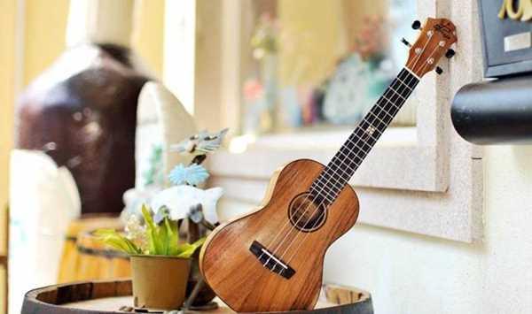 上尤克里里体验课,免费带走一把琴【来自夏威夷的礼物-Ukulele体验之旅】