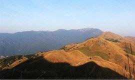 【55户外】周日大南山穿越 赏美丽大草坡  1月21日