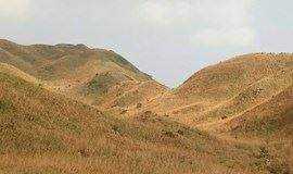 【55户外】周日大南山穿越 赏美丽大草坡  1月28日