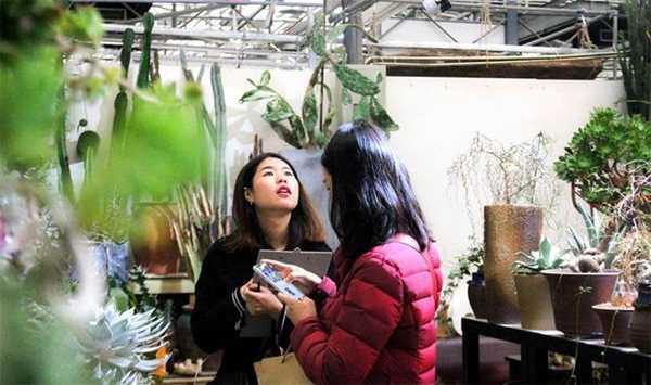 GreenWalk丨过新年,在使馆区的花卉交易所,把春天的色彩带回家