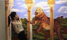 """鸟巢3D美术馆—体验""""傻傻分不清""""的奇特效果"""