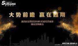 """2018年甦翔投资主办""""新时代、新趋势、新机遇""""主题中国发展与投资论坛"""