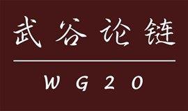 区块链的未来发展逻辑-【武谷论链】(WG20) 携手『区块链硅谷』(BCS) 走进[上海张江高科技园]
