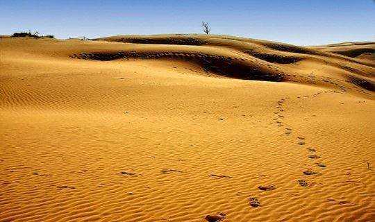 天漠沙漠一日游 龙门飞甲拍摄地/永宁古城/品尝柳沟豆腐宴 摄影跟拍 互动交友