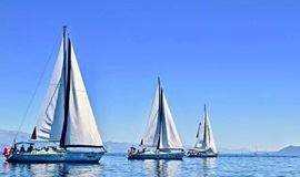 5月 轻奢游艇会 | 潇洒出发,帆船出海 马术体验
