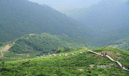 挑战北京最高峰一灵山 海拔2303m 穿越路线
