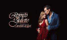 法语原版音乐剧《罗密欧与朱丽叶》字幕译配分享观影会