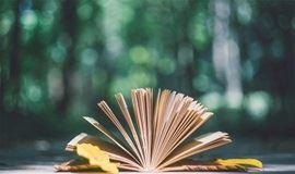 【高效学习力】如何做到30分钟内读完一本书?