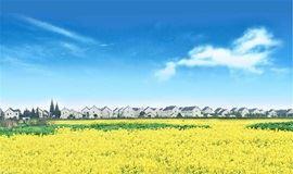 【清明-已成团】这里的油菜花已开成海,这个古镇已等你千年(1天)