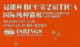 冠能杯 BCC 第二届 TICA 国际纯种猫展
