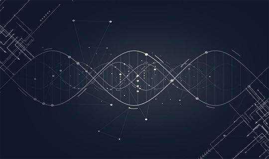 触脉线下分享活动——数据真的能驱动决策吗?
