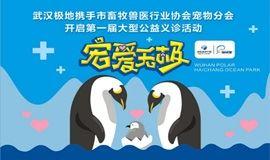 """武汉海昌极地海洋公园""""宠爱无极""""大型小动物公益活动"""